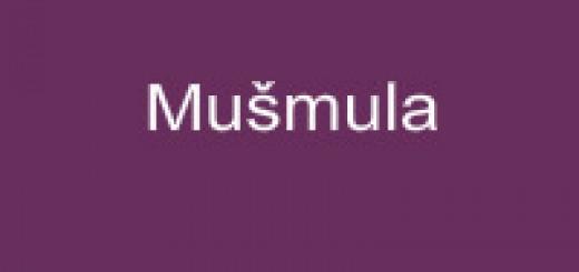 Mušmula