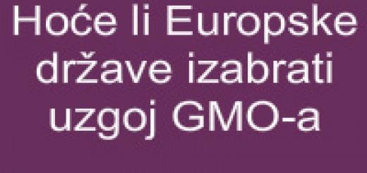 Hoće li europske države izabrati uzgoj gmoa