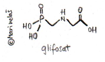 F_Glifosat2h