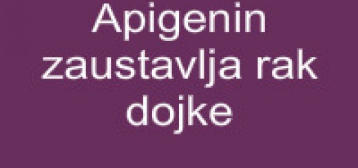 Apigenin zaustavlja rak dojke