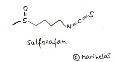 F_Sulforafan_H
