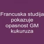 Francuska studija pokazuje opasnost GM kukuruza