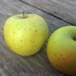 Jabuka u zdravoj prehrani
