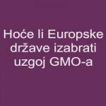 Hoće li Europske države izabrati uzgoj GMO-a?