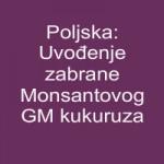 Poljska: Uvođenje zabrane Monsantovog GM kukuruza