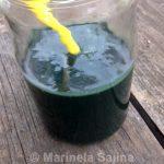 Zeleni napitci sa spirulinom